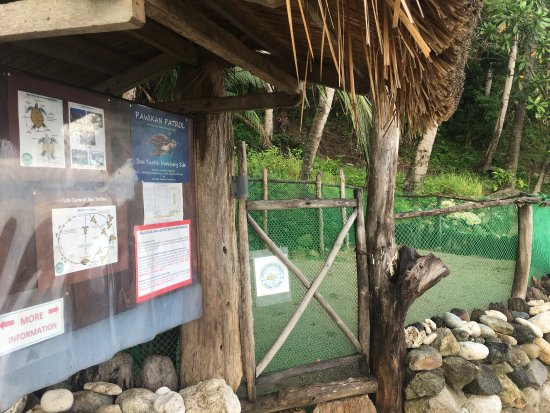 "Abra de Ilog, Philippines: Photos of the ""Under the Mango Tree"", food, and nearby beaches of Tuko Beach Resort"