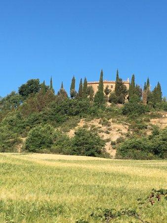 Agriturismo Cretaiole di Luciano Moricciani : photo3.jpg