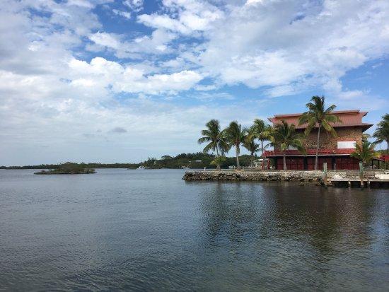 Blackfin Resort and Marina: photo9.jpg