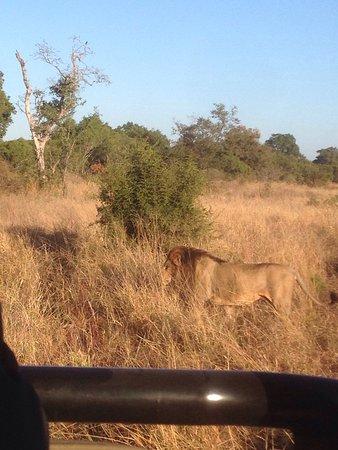 Imbali Safari Lodge: photo5.jpg
