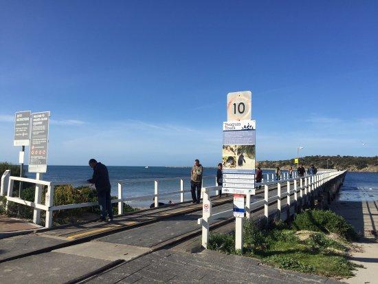 Victor Harbor, Australia: photo0.jpg