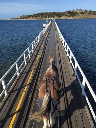 Victor Harbor, Australia: photo1.jpg