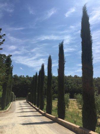 Tuscan fairy tale!