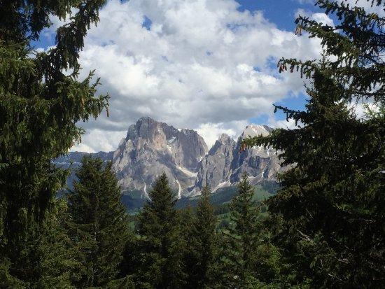 Monte San Pietro, Italia: Wanderung auf der Seiser-Alm