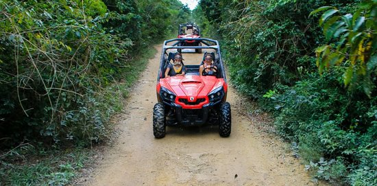Puerto Plata, República Dominicana: Buggy Tour:  Visit the beautiful brigantine beach, then cross the sugar cane fields to visit the