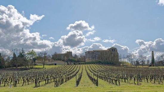 Castillon-la-Bataille, Francia: vue éloignée, depuis le nord, de l'édifice.