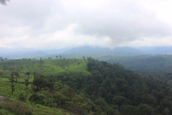 Nallamudi Viewpoint