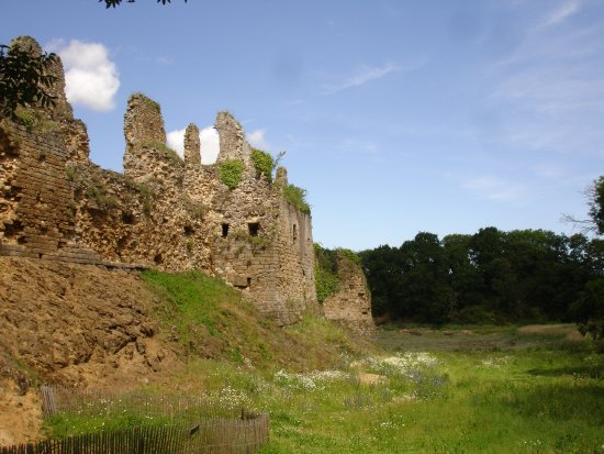 Saint-Jacut-de-la-Mer, França: Le chateau du Guildo