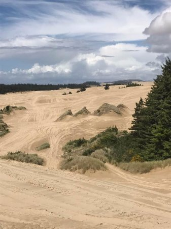 Lakeside, Oregón: Gorgeous scenery and huge dunes!
