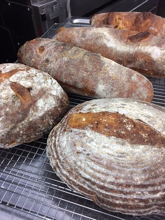 Fresh sourdough bread out of the oven made with organic wheat grown on the Berea College Farm.