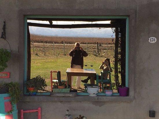 Province of Mendoza, Argentina: Visita a Bodega La Azul. Almoço imperdível. Recomendação do Emiliano.