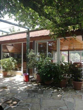 Paradise Restaurant: IMG_20170613_132958_large.jpg