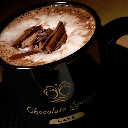 Lenox, ماساتشوستس: serious hot chocolate topped with house made whipped cream and chocolate shavings