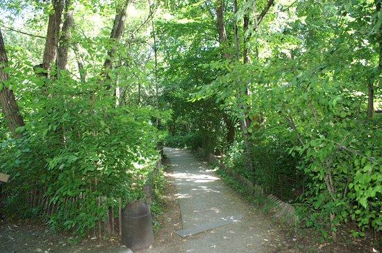 Jardin Naturel Pierre-Emmanuel