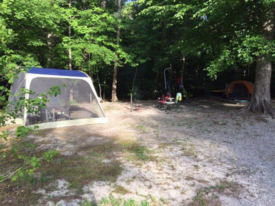 Surry, VA: Campsite 33. Shelter on left, tent hidden on right. Huge site.