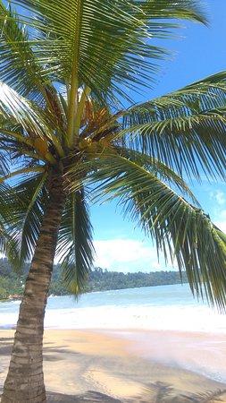 Centara Seaview Resort Khao Lak: IMAG3319_large.jpg