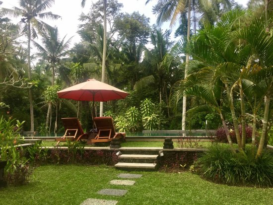 Suara Air Luxury Villa Ubud: photo1.jpg