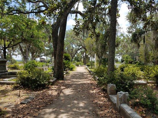 Bonaventure Cemetery Journeys w/ Shannon Scott: Scenic walkway in Bonaventure Cemetary