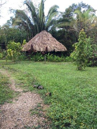 Punta Gorda, Belice: photo1.jpg
