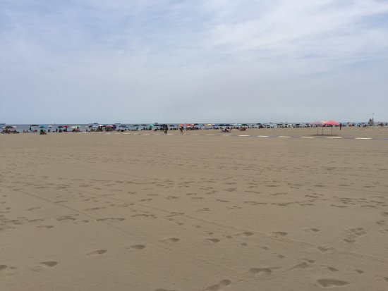 Lido Beach : photo0.jpg