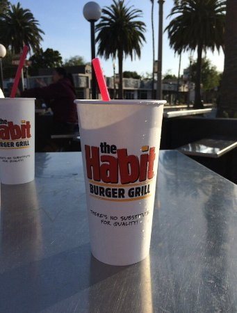 Isla Vista, CA: The Habit Burger Grill