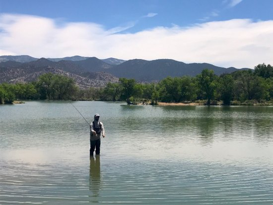Picture of ark anglers salida tripadvisor for Angler fish ark