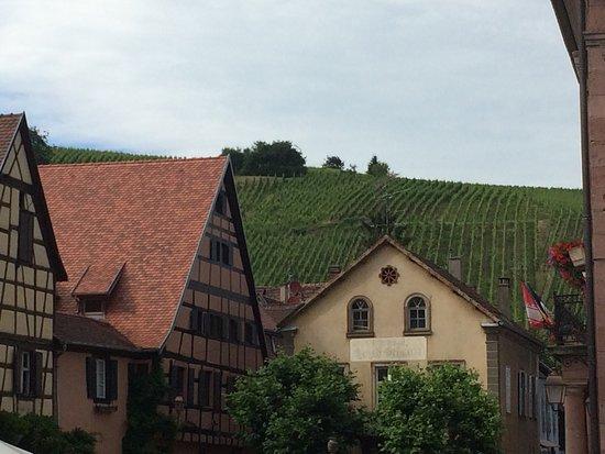 Route des vins d'Alsace: photo0.jpg