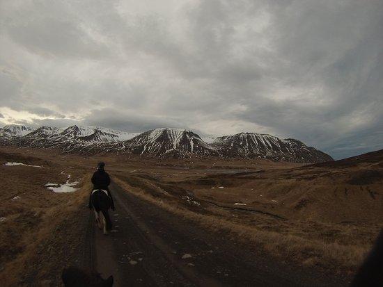 Skagafjordur, Iceland: Viking tour in February