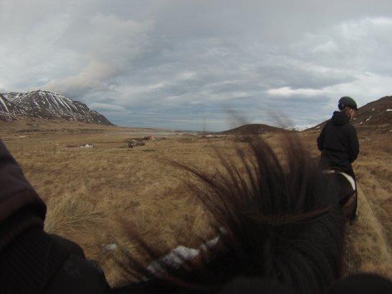 Skagafjordur, Iceland: Thank you Lukka