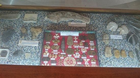 Museo de Medicina Antigua Ciencias Naturles y Arqueologia