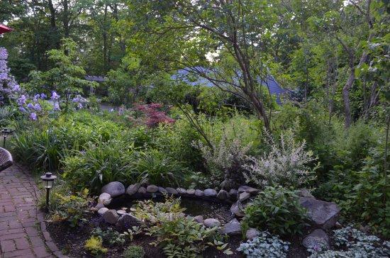 Йорк, Мэн: View from patio