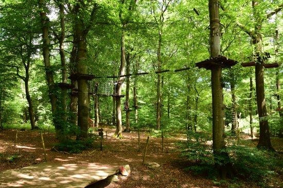 Weiler bei Bingen, เยอรมนี: Abenteuer unter dem grünen Dach des Binger Waldes!