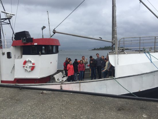 Fun Fjord Tours