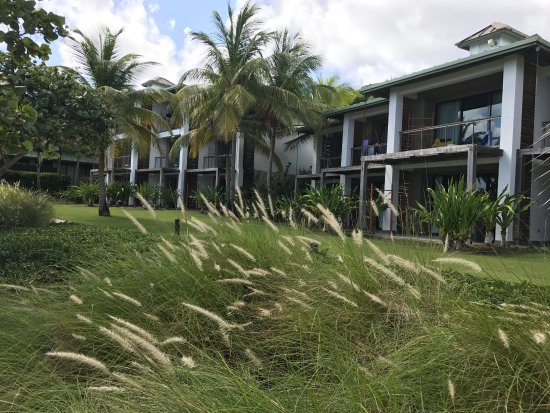 Picture Of W Retreat Spa Vieques Island