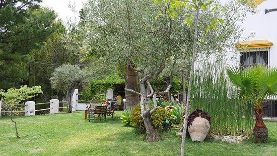 Tolox, Spanien: Dinning Room !!