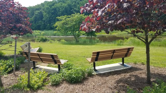 Skillman, NJ: Cluster of Benches with Shade and a View of the Water.