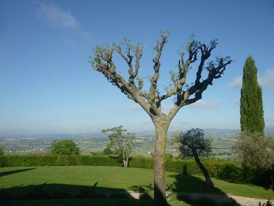 Agriturismo Le Colombe : Uitzicht over de valei tot aan Perugia