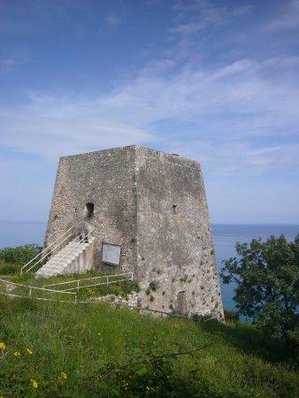 Torre di Monte Pucci