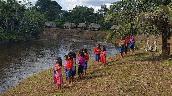 Peru Amazon Adventures (Iquitos) - Lo que se debe saber ...
