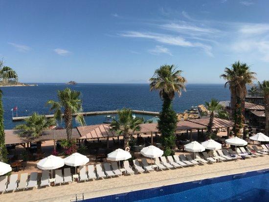 Delta Beach Resort: photo1.jpg