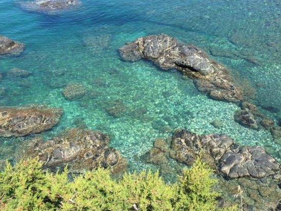 Photo g picture of bagno le forbici rosignano marittimo