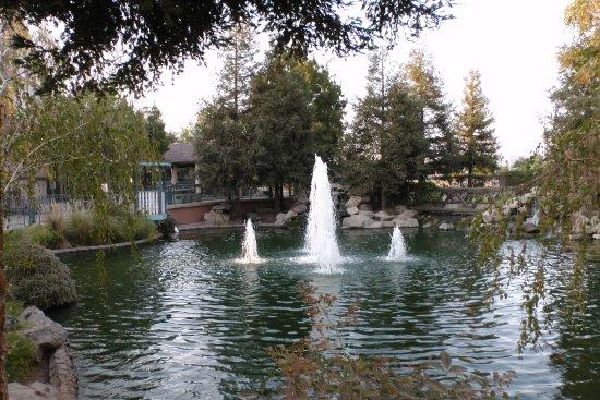 Selma, Kalifornia: Pretty pond outside the restaurant