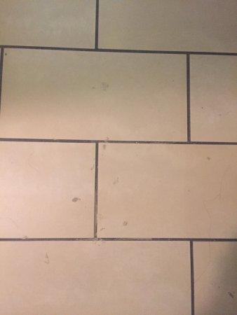 Ivy Hotel Napa: filthy tile floor