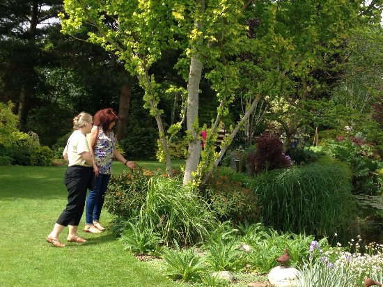 Visitors enjoying the garden open day in June 2017 - Picture of ...