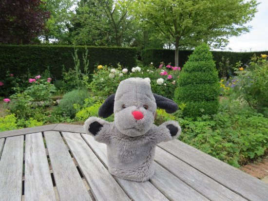 Barnsdale Gardens - Exton - Days Out - The AA