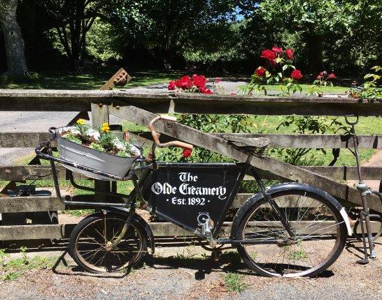 Ohaupo, Νέα Ζηλανδία: Charming old bike/sign