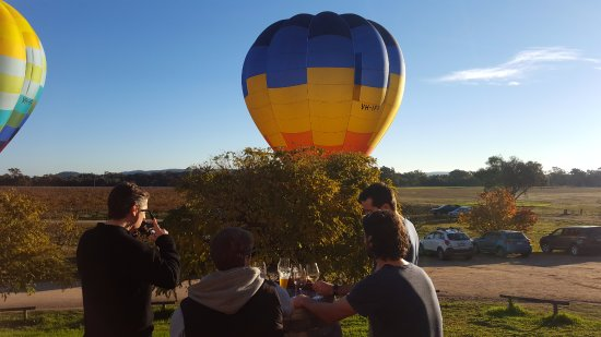 Glenrowan, Australia: spectacular view while enjoying a wine tasting or cleansing ale