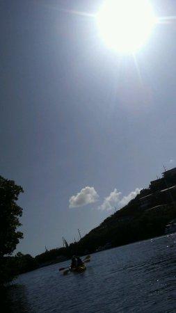 Virgin Islands Ecotours: Kayaking memory