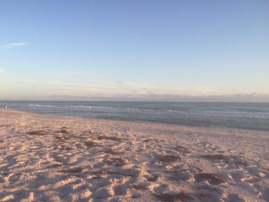The Diplomat Beach Resort: photo1.jpg