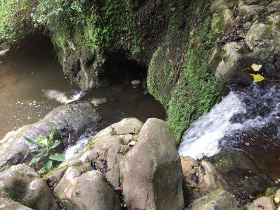 Makawao, HI: photo1.jpg